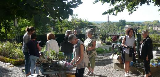 Troc plantes GAILLAC : les photos !