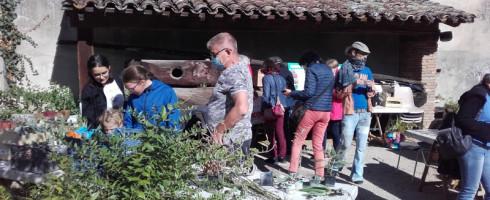 Bourse d'échange de plantes à Gaillac…Compte rendu et photos !