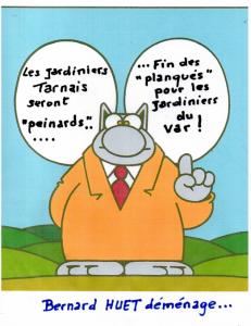 LE CHAT par Francis
