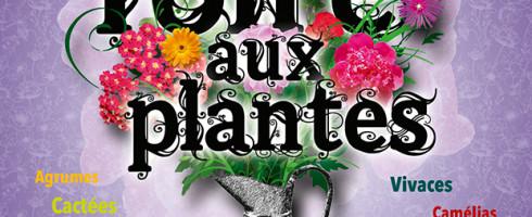 Foire aux plantes Villeneuve sur Vère